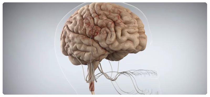 диагностика рассеянного склероза