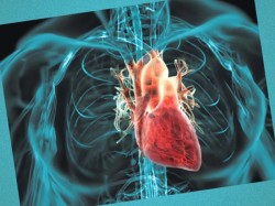kardiohirurgiya v izraile