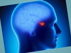 аденома гипофиза симптомы