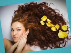 израильская косметика для волос
