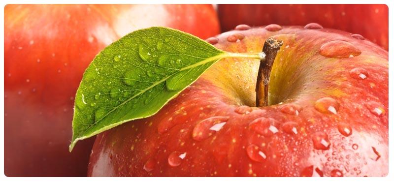терапия нарушения пищевого поведения