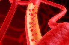БАД, влияющие на сердечно-сосудистую систему человека