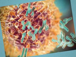 Клинические рекомендации: Грибовидный микоз