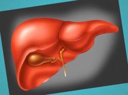 Неспецифический реактивный гепатит