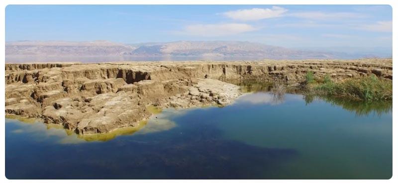 Косметика мертвого моря из иордании